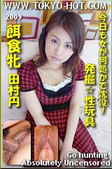 餌食牝 田村円のパッケージ画像