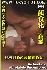 餌食牝 手嶋葵のパッケージ画像