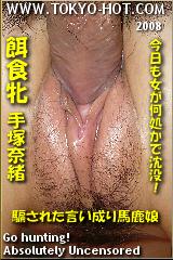 餌食牝 手塚奈緒のパッケージ画像