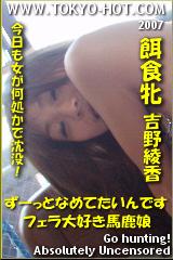 餌食牝 吉野綾香のパッケージ画像