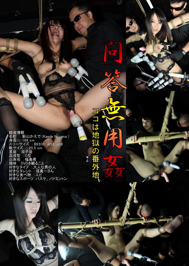 Watch The Cock Lover - Kaede Niiyama
