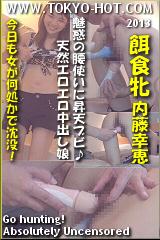 餌食牝 内藤幸恵のパッケージ画像