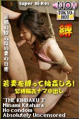 若妻輪姦緊縛ナマ肉奴隷のパッケージ画像