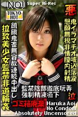 拉致美少女監禁非道輪姦のパッケージ画像