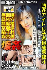 凹姦アイドル子宮損壊悪辣汁のパッケージ画像