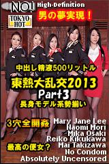 東熱大乱交2013 Part3のパッケージ画像