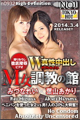 W姦みづなれい/葉山あかりのパッケージ画像